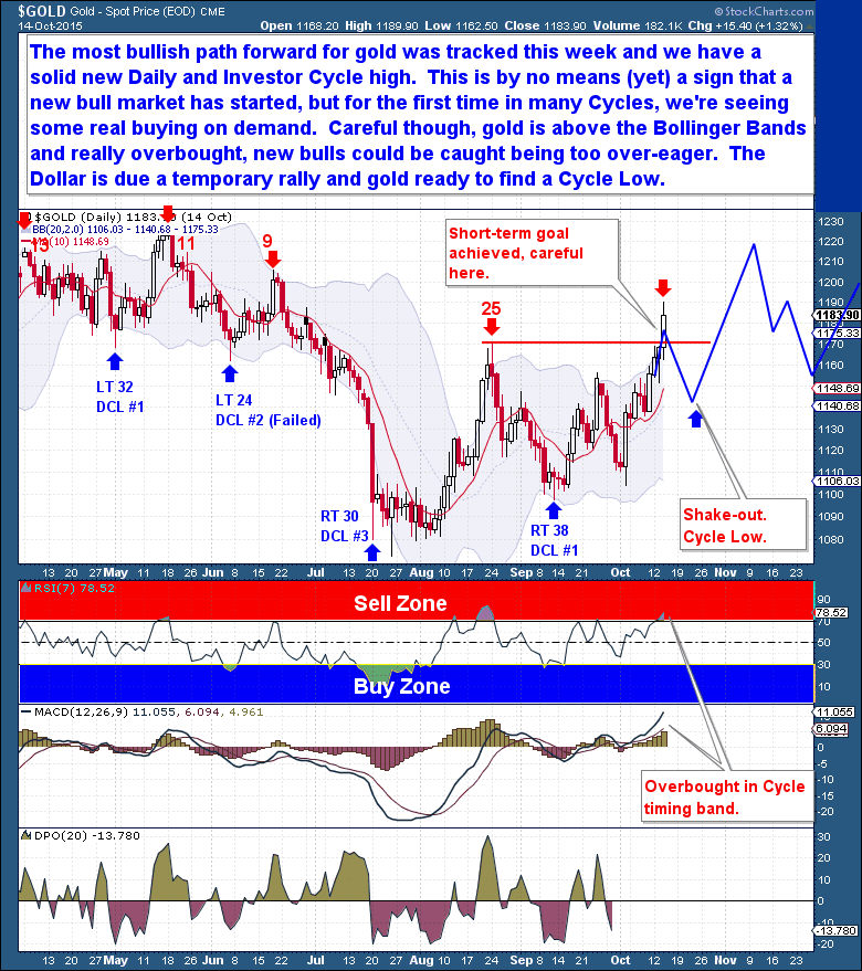 Gold Daily Cycle The Financial Tap